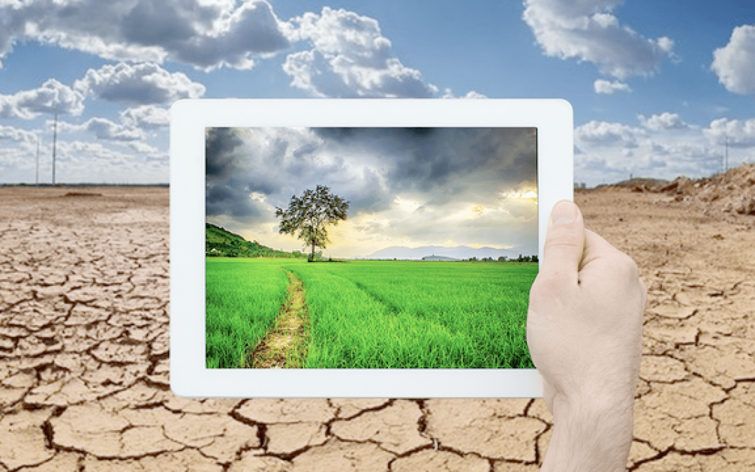 February 2021 Debate – Technology is making the climate debate irrelevant